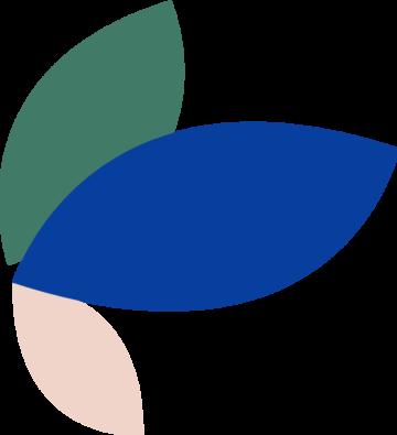 groen-blauw-roze-blad